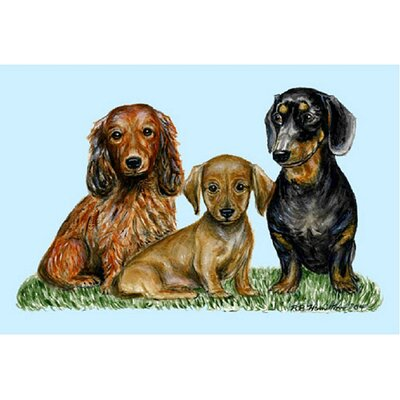 Pets Dachshunds Doormat Size: Rectangle 18 x 26