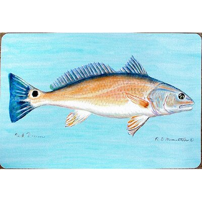 Coastal Drum Doormat Size: 30 H x 50 W