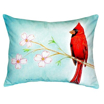 Dick's Cardinal Indoor/Outdoor Lumbar Pillow