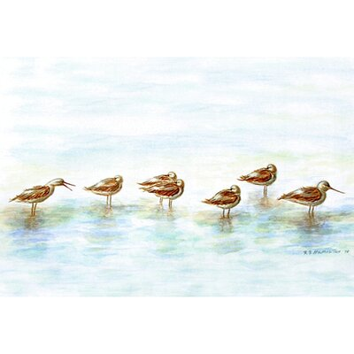 Coastal Avocets Doormat Size: Rectangle 18 x 26