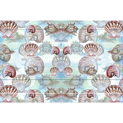 Coastal Shells Doormat Size: 18 H x 26 W