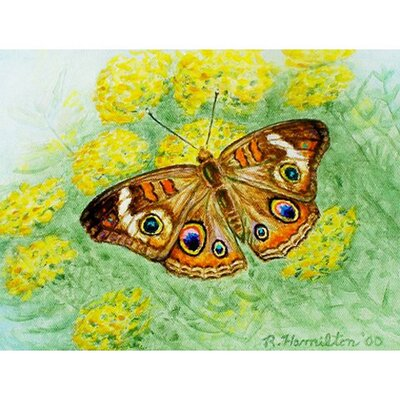 Buckeye Butterfly Doormat Mat Size: Rectangle 26 x 42