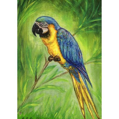 'Blue Macaw' Wall Decor TP032