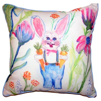 Clarence Mr. Farmer Indoor/Outdoor Throw Pillow Size: 22 x 22