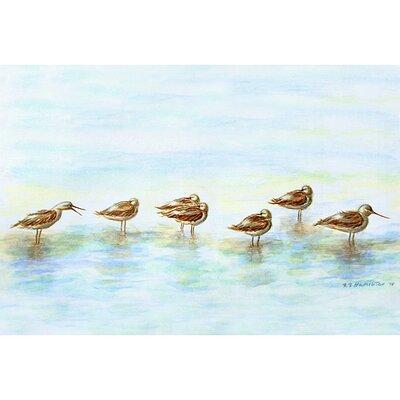 Coastal Avocets Doormat Size: 30 H x 50 W