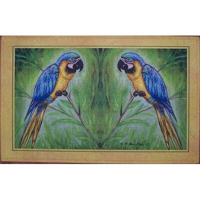 Coastal Macaw Doormat Size: 30 H x 50 W