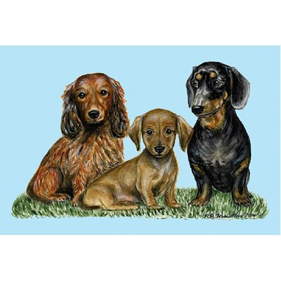 Pets Dachshunds Doormat Size: 30 H x 50 W