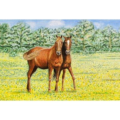 Pets Horses Doormat Size: 18 H x 26 W