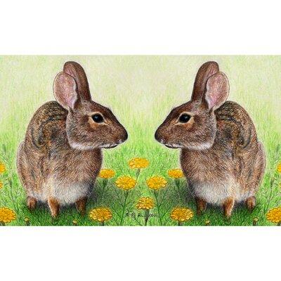 Garden Rabbits Doormat Size: 18 H x 26 W