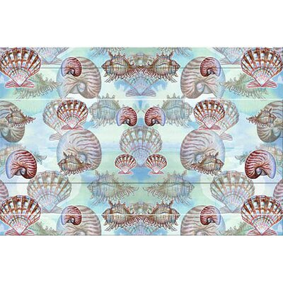 Coastal Shells Doormat Size: 30