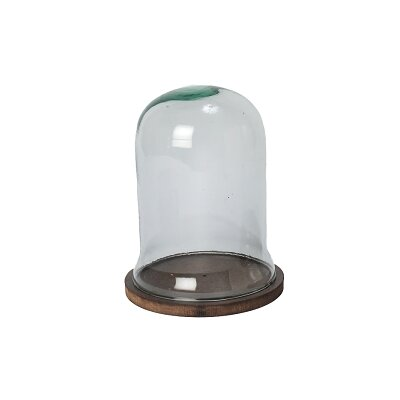 Dome Glass with Wood Base Cloche