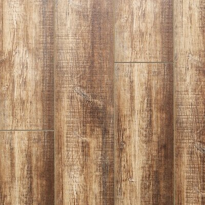 Caravel 8 x 48 x 3mm Pine Laminate Flooring in Embossed