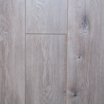 Mist 12 x 48 x 3mm Oak Laminate Flooring in Embossed