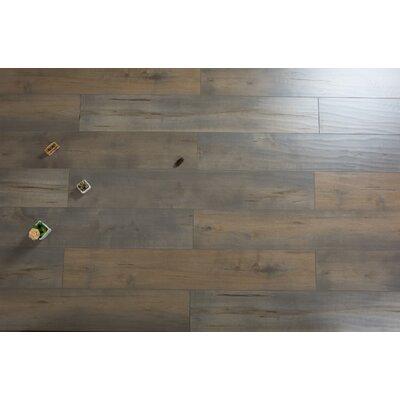 Cumulus 7.72 x 47.83 x 12mm Pine Laminate Flooring in Redish Gray