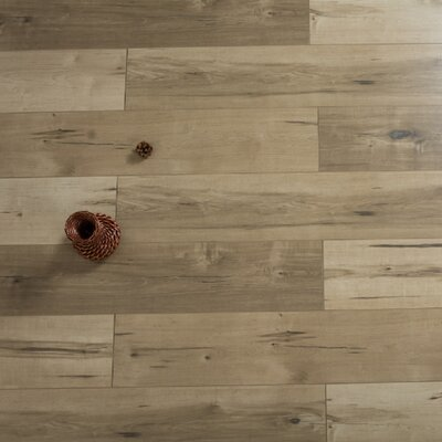 Stratus Sunset 7.72 x 47.83 x 12mm Oak Laminate in Tan