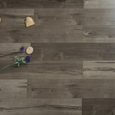 Cirrus Gale 7.72 x 47.83 x 12mm Maple Laminate in Gray