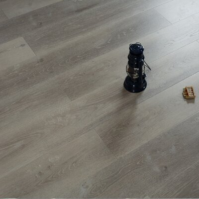 Morrison Frost 7.72 x 47.83 x 12mm Oak Laminate Flooring in Gray
