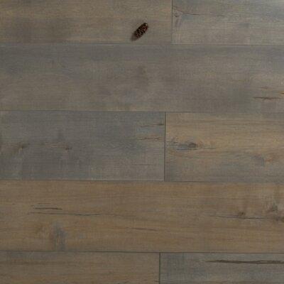 Cumulus 12 x 48 x 3mm Pine Laminate Flooring in Embossed