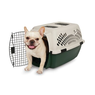 Plastic Dog Crate/Carrier Size: 26 (26 H x 18.5 W x 16 L)