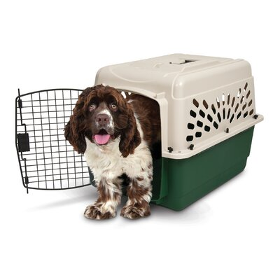 Plastic Dog Crate/Carrier Size: 28 (28 H x 20.5 W x 21.5 L)