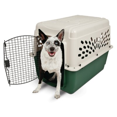Plastic Dog Crate/Carrier Size: 36 (36 H x 25 W x 27 L)