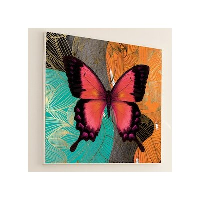 """Metamorphosis Modern Butterfly Graphic Art Size: 48"""" H x 48"""" W, Frame Color: White Matte 10M3WH"""