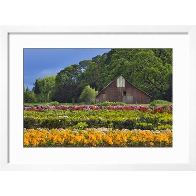 "'Point Dume, Malibu, California, USA' Framed Photographic Print Frame: Soho Black Framed, Size: 23"" H x 31"" W 15191402"
