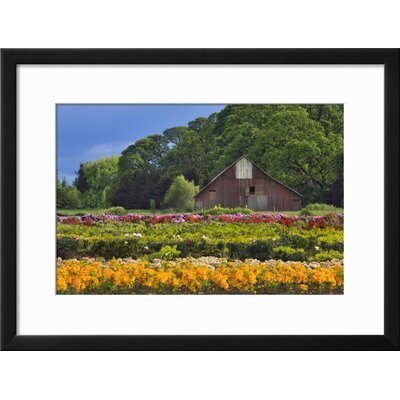 "'Point Dume, Malibu, California, USA' Framed Photographic Print Frame: Soho Black Framed, Size: 19"" H x 25"" W 15191401"
