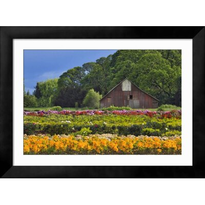 "'Point Dume, Malibu, California, USA' Framed Photographic Print Frame: Tribeca Black Framed, Size: 34"" H x 46"" W 15191403"