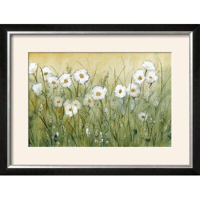 'Daisy Spring II' Framed Print 15200224
