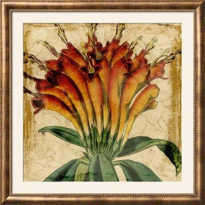 'Vibrant Floral IV' Framed Print 15199951
