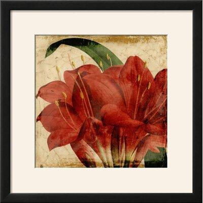'Vibrant Floral VIII' Framed Print 65F2092BC6EE43288FCD19B965F5196A