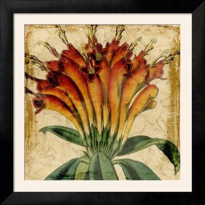 """'Vibrant Floral IV' Framed Print Frame: Tribeca Black Framed, Size: 44"""" H x 44"""" W EBF54CB29CB147B69FCF4D1C5D81C548"""