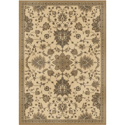 Bergues Area Rug Rug Size: 53 x 76