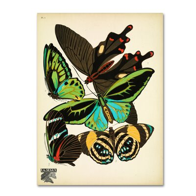 'Papillons 1' Graphic Art Print on Wrapped Canvas Size: 19