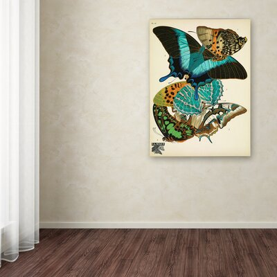 'Papillons 13' Graphic Art Print on Wrapped Canvas Size: 19