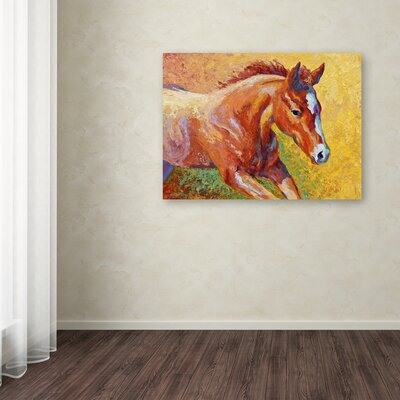 'Sorrel Filly' Print on Wrapped Canvas ALI7777-C1419GG
