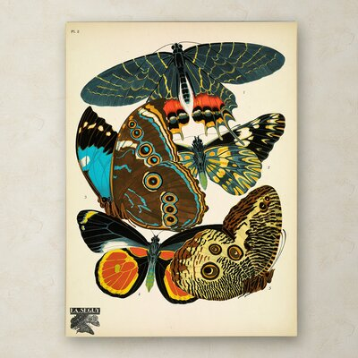 'Papillons 2' Graphic Art Print on Wrapped Canvas Size: 19