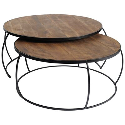 Delisio 2 Piece Coffee Table Set Color: Brown