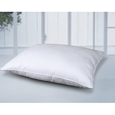 All Natural Cotton Pillow Size: Standard Pillow: 20 x 26