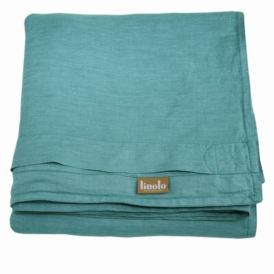 Linen Duvet Cover Size: Full/Queen, Color: Teal