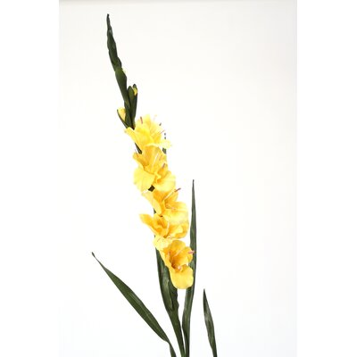 DIY Flower Gladiola