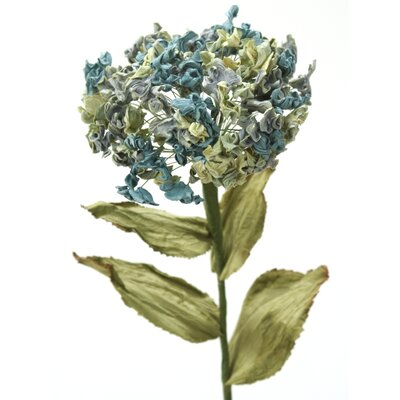 DIY Flower Hydrangea image