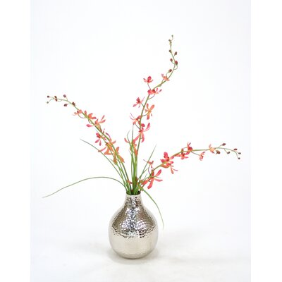 Orchids, Grass in Vase