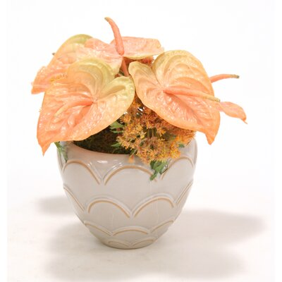 Orange Anthuriums in Ceramic Vase 6910