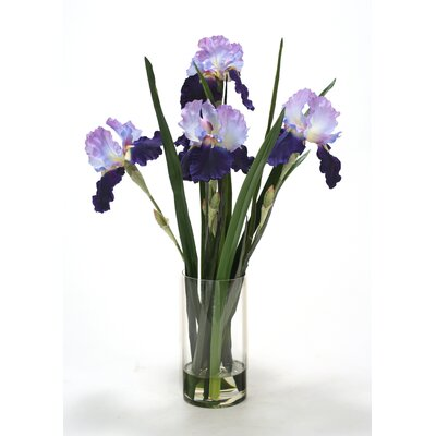 Waterlook Purple-Violet Irises with Grass Blades in Glass Cylinder 16106A