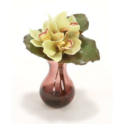 Waterlook Fall Green Cybidium Orchid Bouquet in Plum Bulb Forcer (Set of 2)