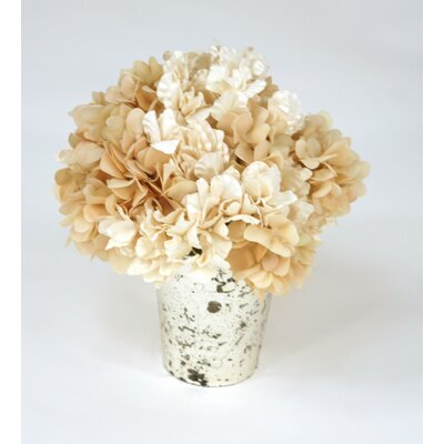 Waterlook Ivory Hydrangeas in Mercury Glass Vase
