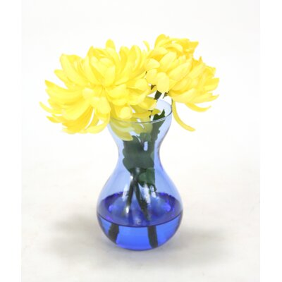 Waterlook Yellow Mums in Bulb Forcer