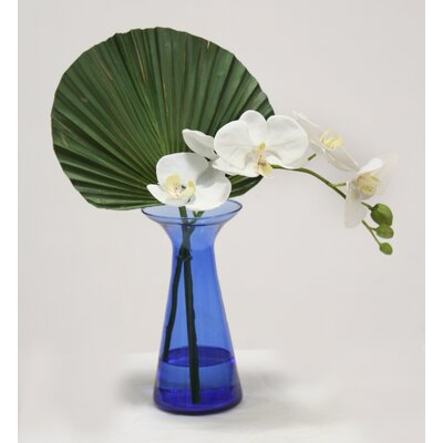 Waterlook White Phaleanopsis Orchids with Fan Palm in Bottle